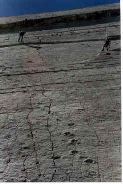 STEGOSAURO dinosauro Figure JURASSIC WORLD azione attacco CARNOTAURUS sastrei